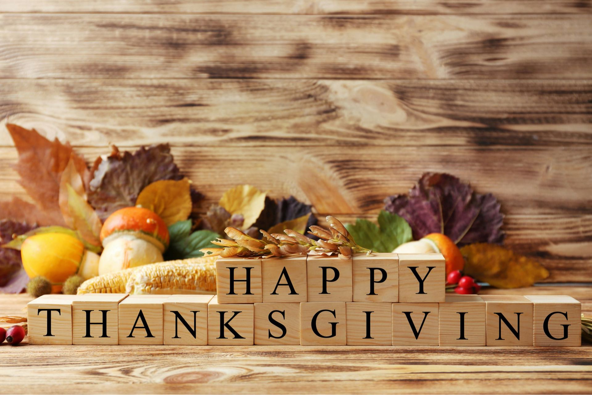Happy Thanksgiving: One Greenway Gives Thanks