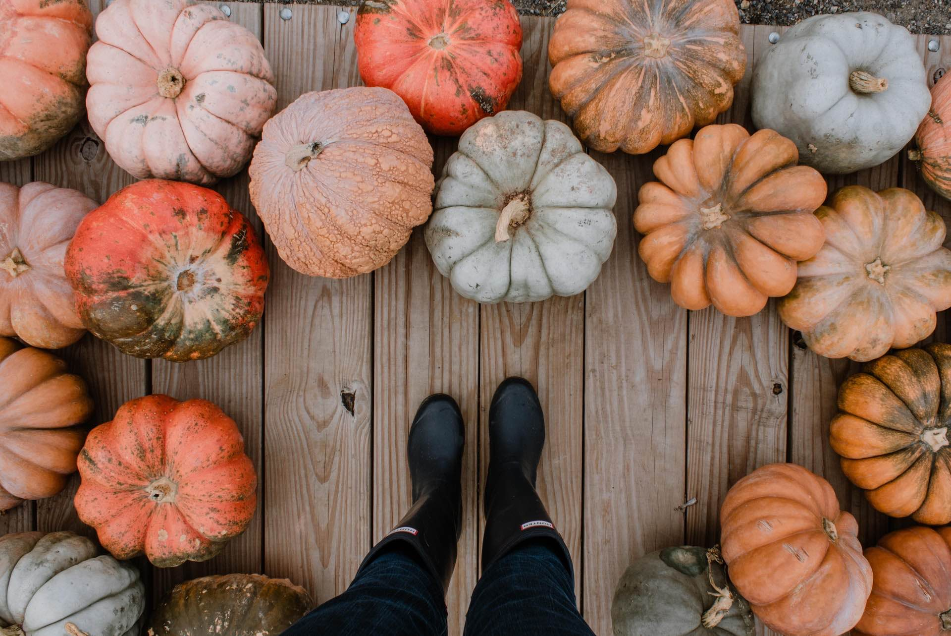 The Best Ways to Decorate a Pumpkin, No Carving Knife Necessary