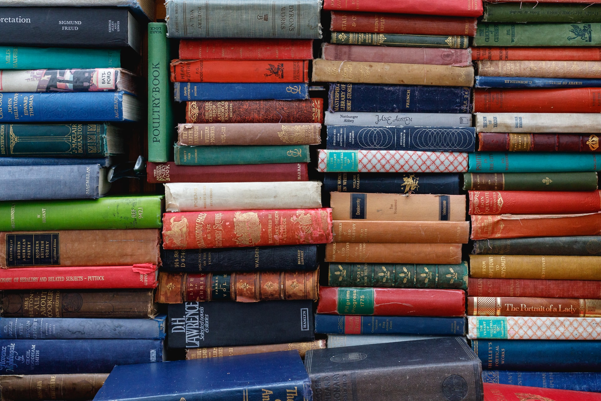 Frugal Bookstore: A Must-Stop Shop for Local Bibliophiles